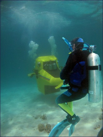 Safety diver accompanies the entire dive